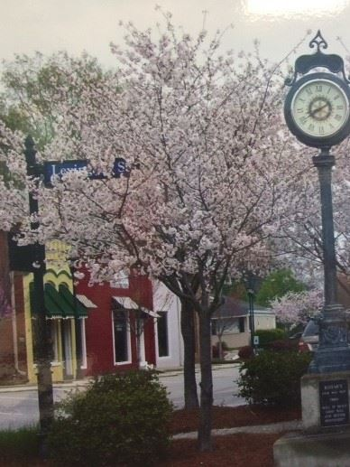 Photograph of downtown Chapin's Beaufort Street and old Rotary Clock